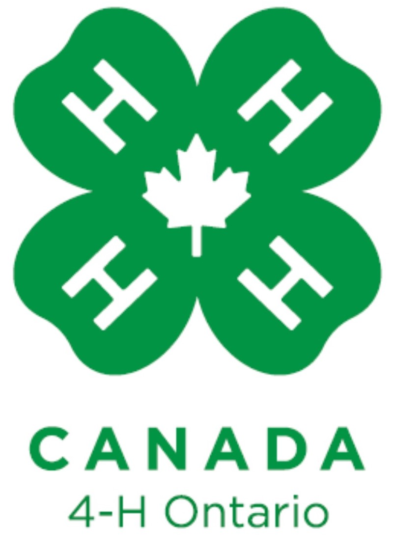 4-H Ontario Volunteer Conference Online Auction's Logo