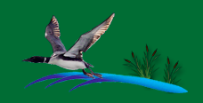 LWRA Fund Raiser's Logo